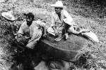 Những phát hiện khảo cổ bí ẩn nhất lịch sử nhân loại