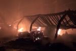 Xưởng gỗ ở Bình Dương bốc cháy ngùn ngụt trong đêm