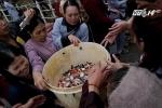Phóng sinh hàng tấn cá chim trắng xuống sông Hồng: Hiểm họa khôn lường