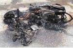 Trộm chó bằng kích điện, cẩu tặc bị đốt xe