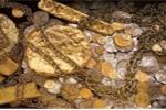 Tiết lộ của người tham gia cuộc truy tìm kho báu hàng trăm tấn vàng ở miền Trung