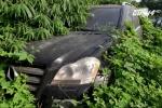 Bí ẩn hàng triệu siêu xe hạng sang của đại gia Trung Quốc bị bỏ lại trong rừng sâu