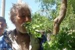 Gặp gỡ người đàn ông ăn lá cây trừ bữa suốt hàng chục năm vì quá nghèo