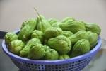 Su su: Loại rau dồi dào dinh dưỡng thường bị bỏ qua