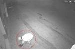 'Cạn lời' với thanh niên đi xe máy trộm... dép lúc nửa đêm