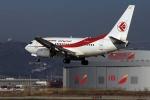 Máy bay Air Algerie mất tích bí ẩn ở độ cao 7.000m