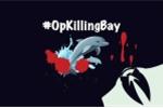 Anonymous tấn công website sân bay Nhật Bản để phản đối việc săn cá heo