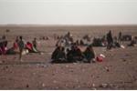 """Dân thường bị IS bắt làm """"lá chắn sống"""" ở Mosul"""