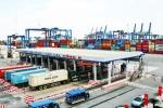 213 container 'mất tích' vì xuất cảnh không đúng quy định: Bộ Công an vào cuộc