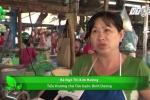 Bình Dương: Cửa hàng thịt sạch bị đốt phá ngay sau khai trương
