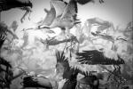 20 cuộc di cư ngoạn mục của các loài vật trên Trái Đất