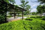 Iris Homes: Dinh thự xanh giữa lòng Hà Nội