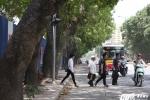 Ảnh: Hơn 1.300 cây xanh trước ngày bị đốn hạ trên phố Hà Nội