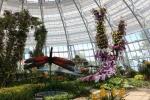 Vinpearl Land mở cửa Đồi Vạn Hoa - công viên thực vật 5 châu độc đáo nhất Việt Nam