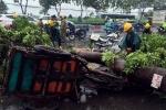 Dông lốc quật ngã cây cổ thụ ở Sài Gòn, đè trúng người đi đường