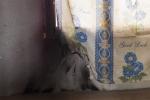 Hoang mang đồ dùng trong nhà đột ngột bốc cháy