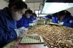 Bên trong 'thung lũng sản xuất đạn' của quân đội Việt Nam
