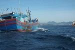 Bị tàu Philippines đâm chìm, 7 ngư dân mất liên lạc trên biển
