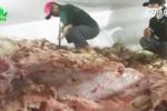 Hơn 30 tấn thịt lợn không nguồn gốc suýt 'lên mâm'
