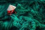 Khung cảnh Việt Nam đạt giải nhất cuộc thi ảnh nổi tiếng thế giới