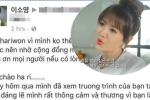 Bị chỉ trích dữ dội vì nói: 'Phụ nữ Việt lấy chồng Hàn chỉ vì tiền', Hari Won lên tiếng