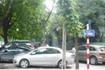 Hà Nội thí điểm đỗ xe chẵn, lẻ trên nhiều tuyến phố trung tâm