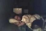 Đặt camera quay lén lúc ngủ, 'lật tẩy' bí mật của mèo cưng