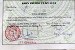 Phó chủ tịch xã 'phê bình cả nhà' cô gái trong lý lịch: Đã có 'bút phê' mới của chủ tịch