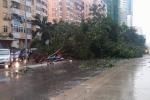 Áp thấp nhiệt đới trên Biển Đông mạnh lên thành bão, khu vực Hà Nội mưa dông