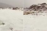 Cảnh tượng hiếm có: Tuyết phủ trắng sa mạc khô cằn ở Ả Rập