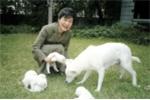 Bỏ lại chó ở Nhà Xanh, bà Park Geun-Hye bị khiếu nại