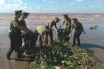 600 chiến sĩ công an, bộ đội ra tay làm sạch biển