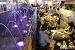 Thiên đường ẩm thực dưới lòng đất đầu tiên ở Sài Gòn hút du khách