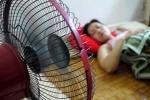 Người già sử dụng quạt điện có thể gây tổn hại cho tim