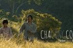 Vì sao đạo diễn 'Cha cõng con' trả lại bằng khen cho ban tổ chức Cánh Diều?
