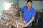 Kinh ngạc căn hầm chứa 10 tấn rượu 'tan cửa nát nhà' ở Tuyên Quang
