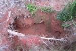 Ba phu vàng bị ngạt khí độc, mắc kẹt trong hang sâu