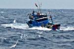 Ngư dân Việt Nam được tàu Trung Quốc cứu sắp về nước