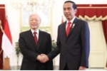 Tổng Bí thư hội đàm với Tổng thống Indonesia