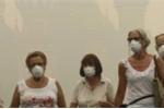Tìm ra mối liên hệ giữa ô nhiễm không khí và bệnh Alzheimer