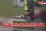 Video: Phẫn nộ người đàn ông trói cổ, kéo lê chú chó trên vỉa hè