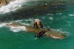 Kết cục bi thảm của toán biệt kích Triều Tiên đổ bộ Hàn Quốc bằng tàu ngầm 20 năm trước