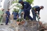 Ông Đoàn Ngọc Hải tiếp tục 'dẹp cướp vỉa hè': Bờ tường, bồn cây gần Bộ Công thương bị đập bỏ