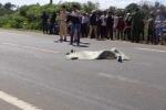 Đi mua mì tôm, học sinh lớp 5 bị xe tải cán qua người chết thương tâm