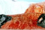 Bí ẩn về thác máu kinh dị ở Nam Cực