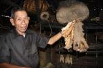 'Thủy quái' khổng lồ sông Mã và chuyện thợ săn giữ sọ thủy quái làm kỷ niệm