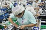 Bất ngờ mức lương 'khủng' doanh nghiệp Nhật trả cho lao động người Việt