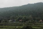 Vì sao Vĩnh Phúc thông qua 'siêu' nghĩa trang trên khu vực rừng phòng hộ?