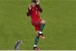 Thi đấu kém cỏi, Ronaldo bị ghép ảnh trêu chọc