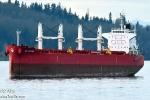 Tàu cá chở 11 người bị chìm, 1 thuyền viên mất tích